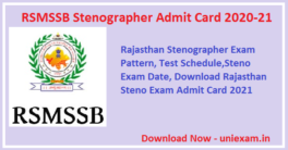 RSMSSB-Stenographer-Admit-Card-2020-21